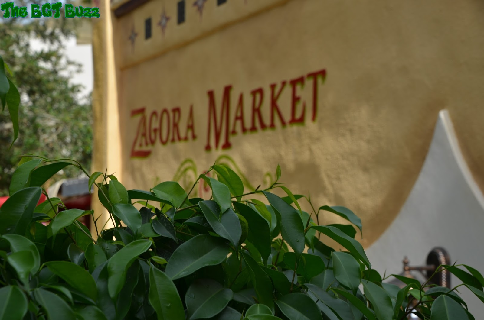 The BGT Buzz: The Zagora Market Opens At Busch Gardens Tampa!