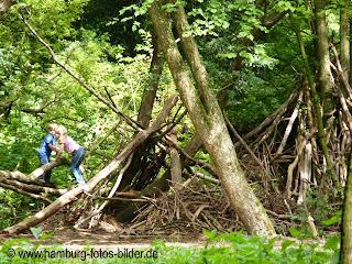Hamburg Ausflugsziel mit Kindern und Familie, Natur, Niendorfer Gehege