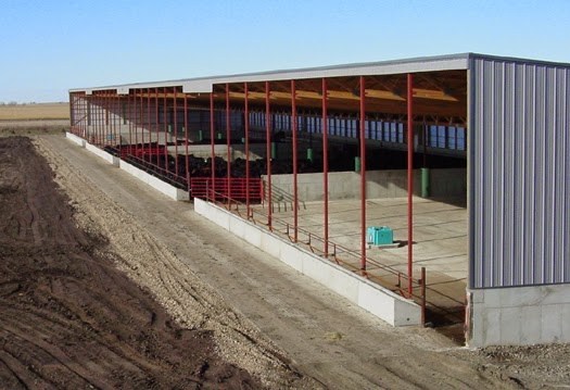 Lester Buildings Blog Where S The Beef In A Monoslope Beef Barn