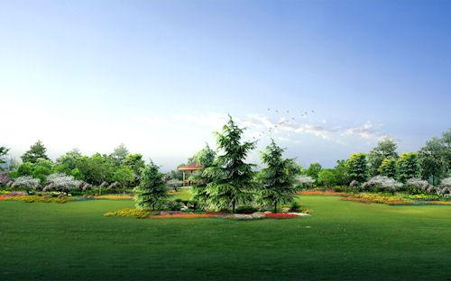 Mi jardín verde - My green garden