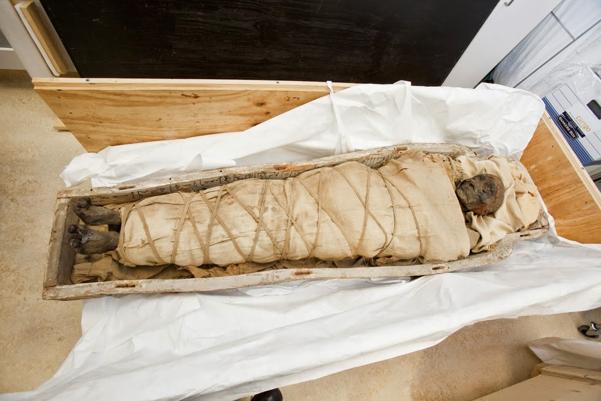 CT scans reveal plaques beneath mummy's wrappings