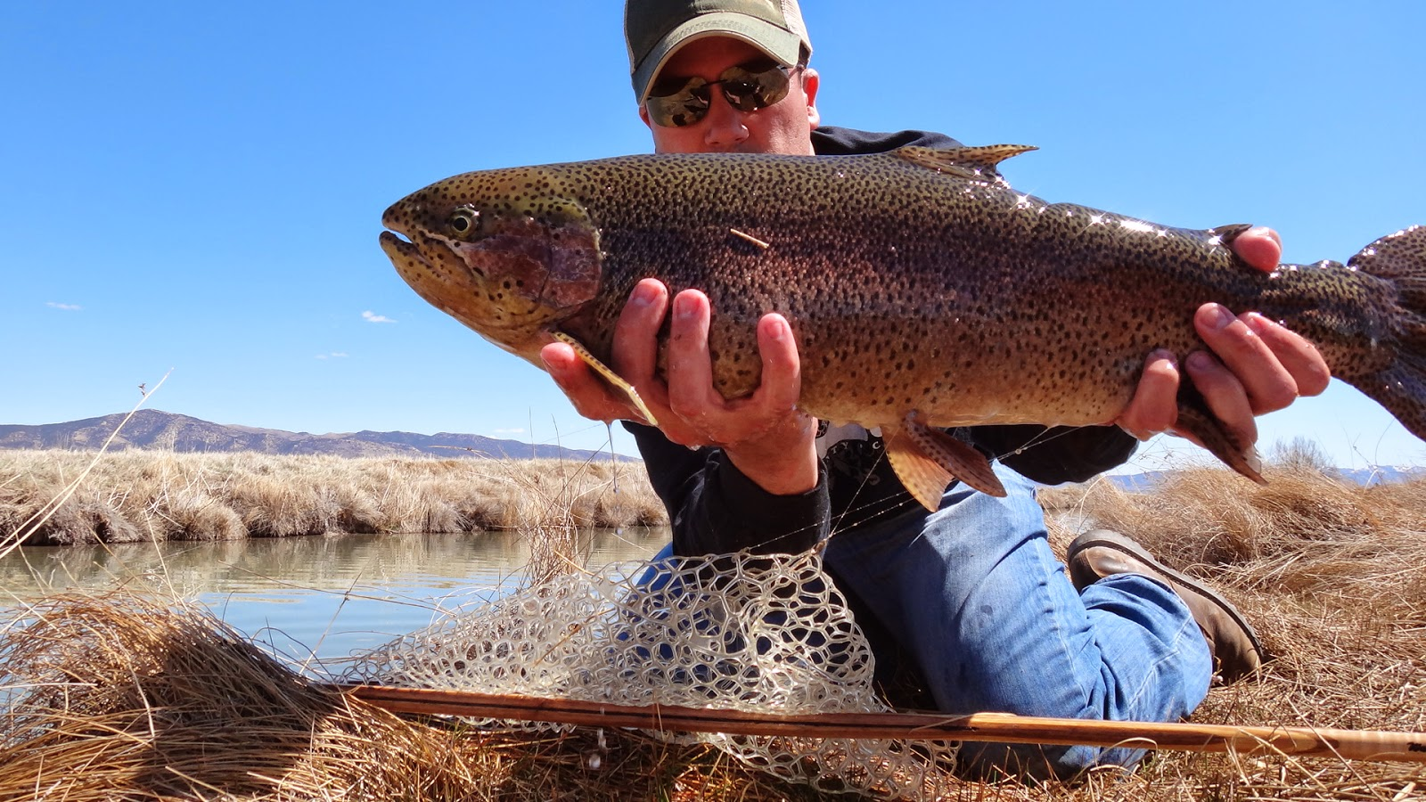 The fly syndicate fly fishing northern nevada the trifecta for Fly fishing nevada