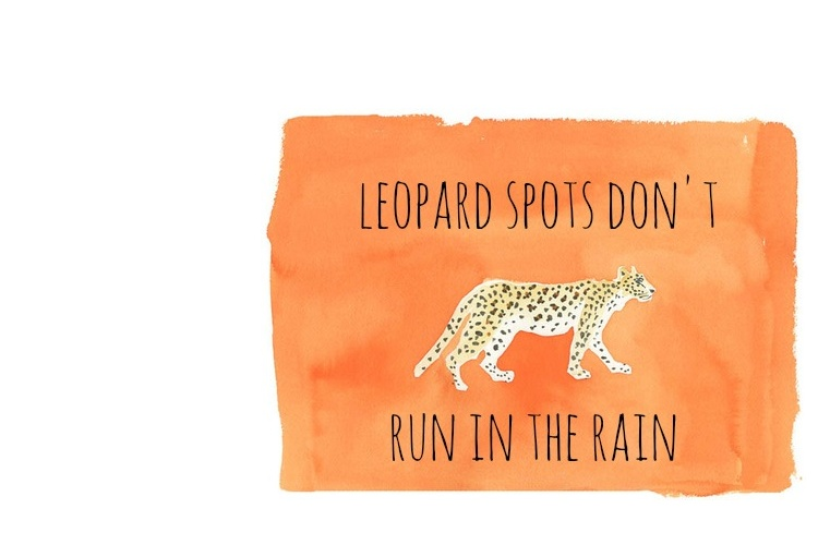 Leopard spots don't run in the rain