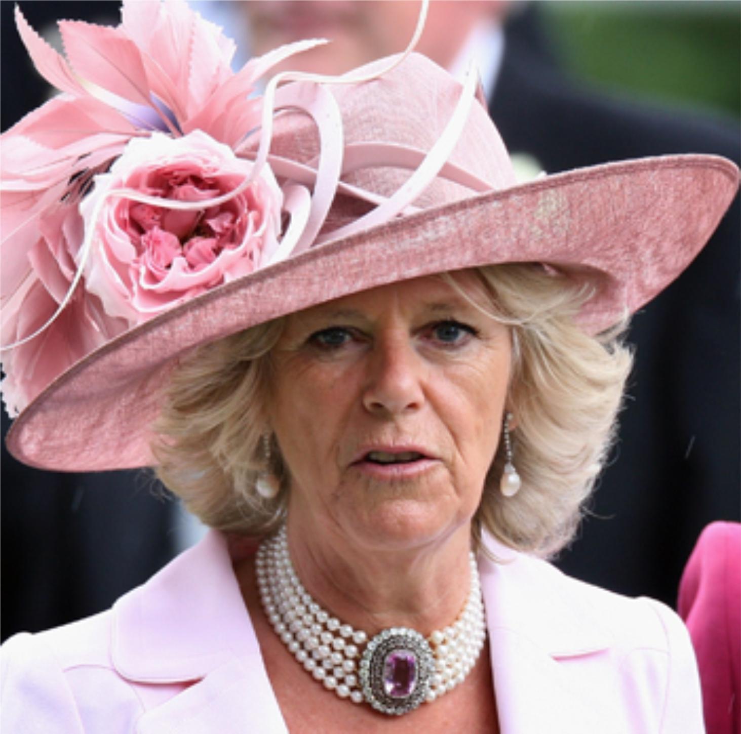 El Príncipe Harry no es hijo de Carlos y Diana. Es de Diana y James ...