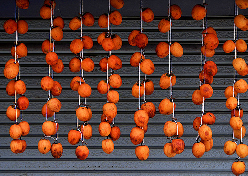 Japanese persimmons drying in the sun