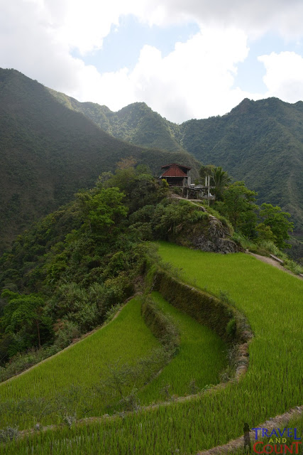 Batad Rice Terraces Banaue Philippines