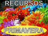 RECURSOS PRIMAVERA