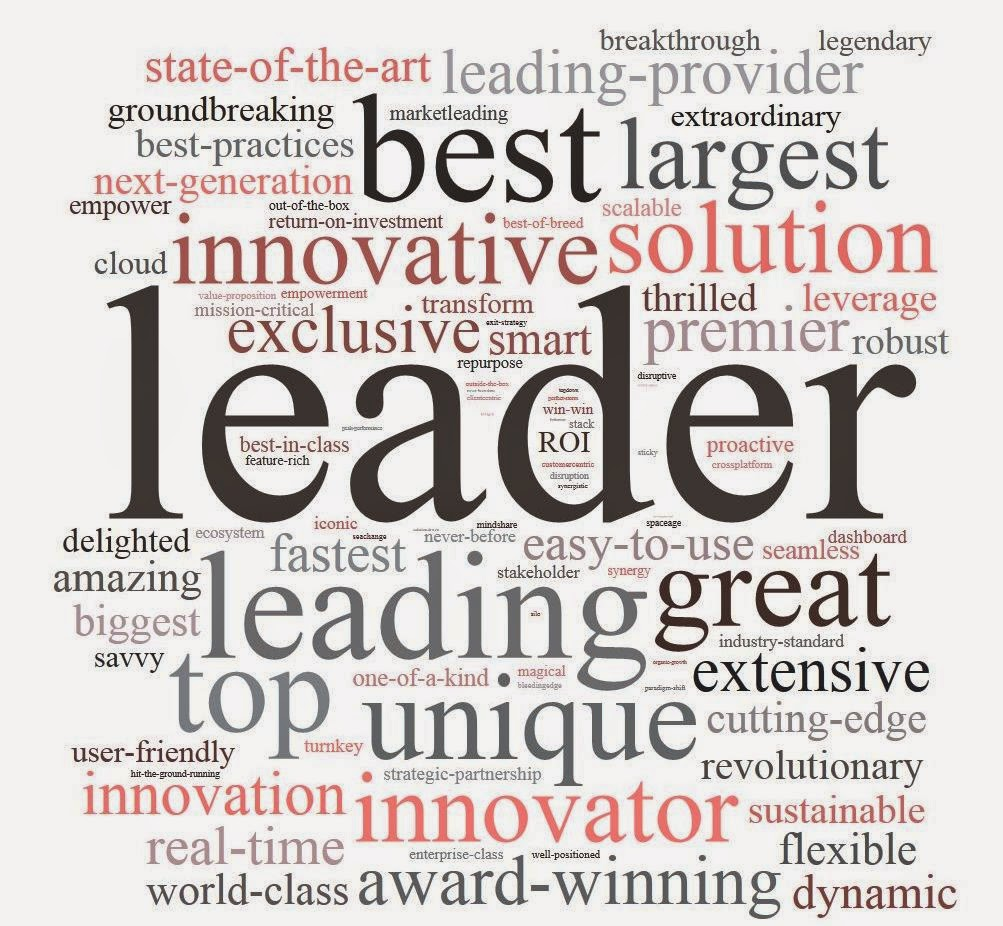 what does the word leader mean