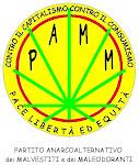 VIDEO DEL PAMM