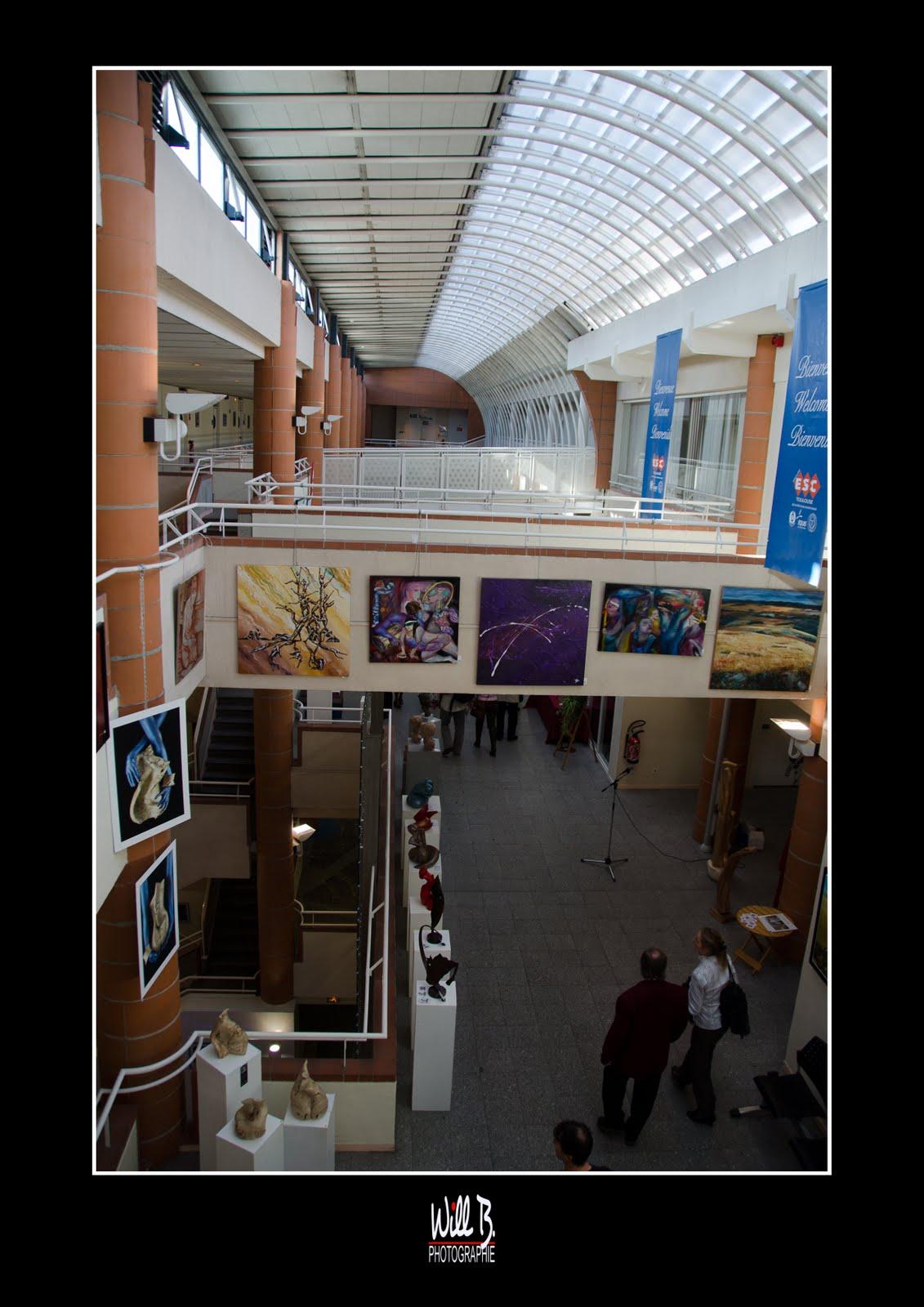 Les arts et lettres de france haute garonne 11e salon des for Salon des ecoles de commerce