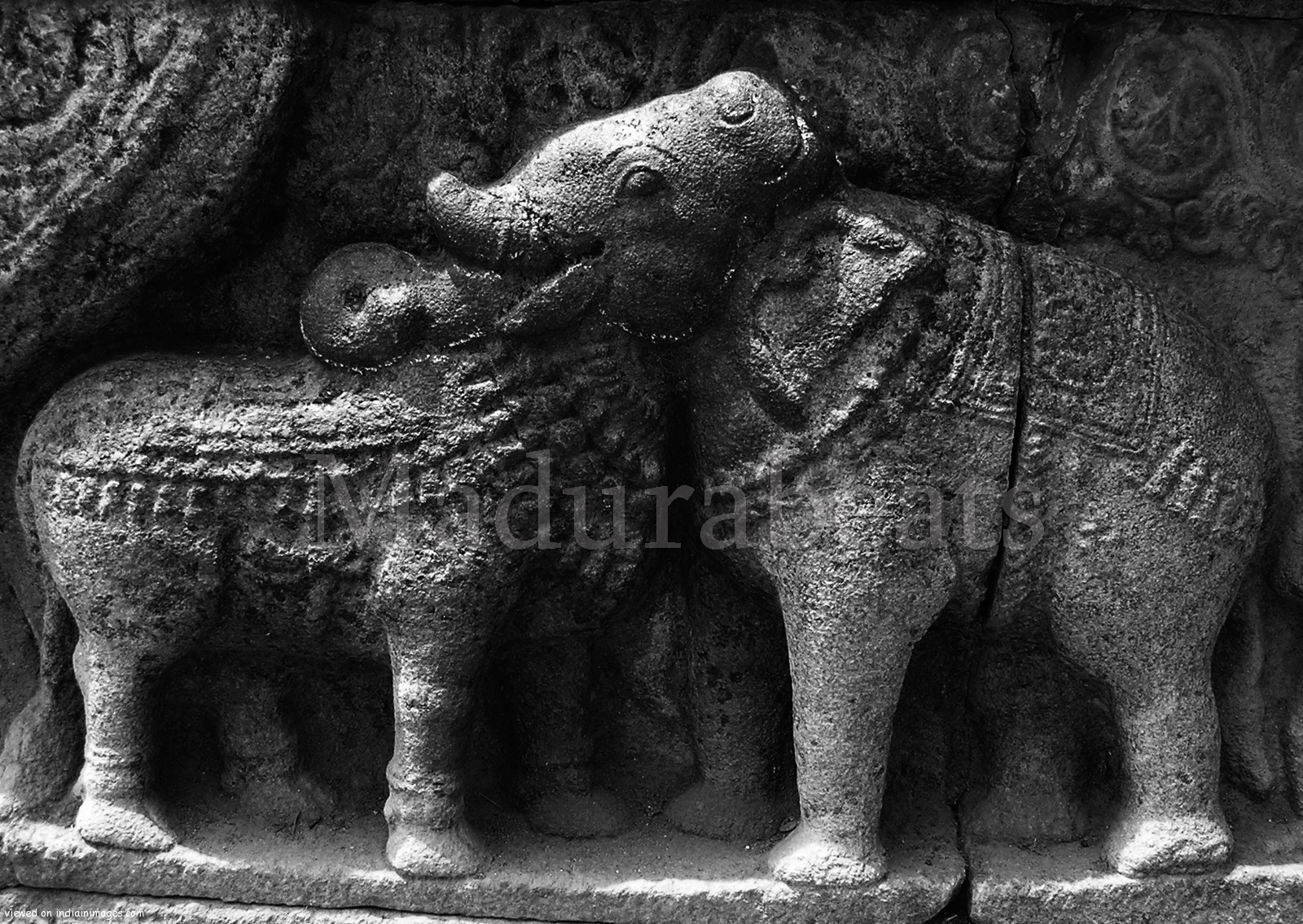 Ox and Elephant-seems-like-Twins-sculpture,Two in one sculpture, Indian temple sculpture