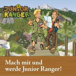 Junior Ranger Web