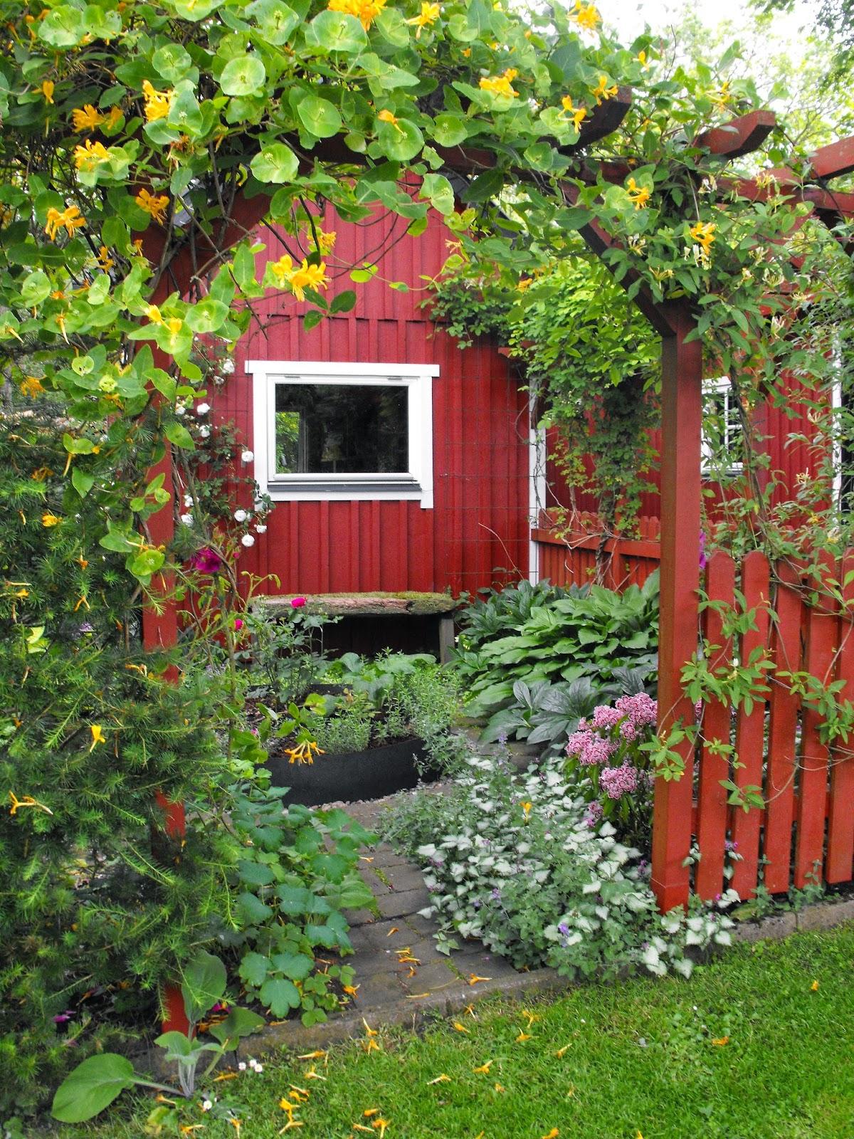 Solveig & Lasses Trädgård, Solveig och Lasses Trädgård, Sösdala, Tusen Trädgårdar 2014, #TusenTrädgårdar2014, Vacker trädgård