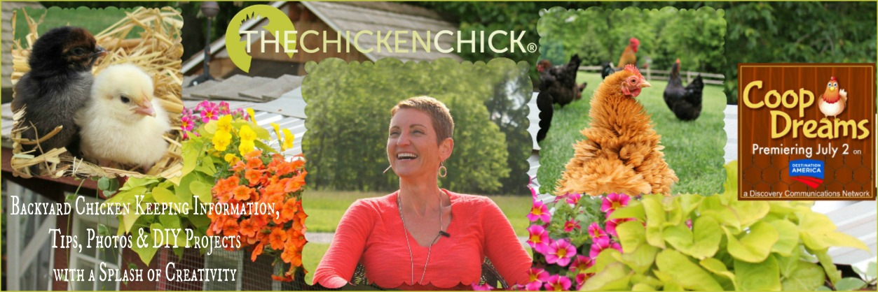 The Chicken Chick®