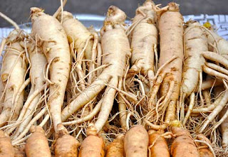 Panax ginseng has effect central nervous system.