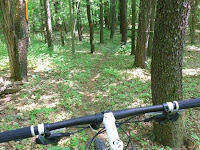 Smooth singletrack on county forestland in the Saratoga Sand Plains, K-P parcel.  The Saratoga Skier and Hiker, first-hand accounts of adventures in the Adirondacks and beyond, and Gore Mountain ski blog.
