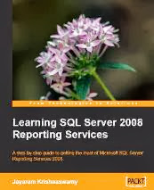 SQL Server Reporting Services 2008