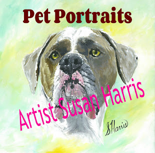 Pet Portraits By Artist Susan Harris