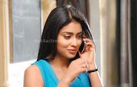 Shriya, saran, in, nuvva, nena, movie