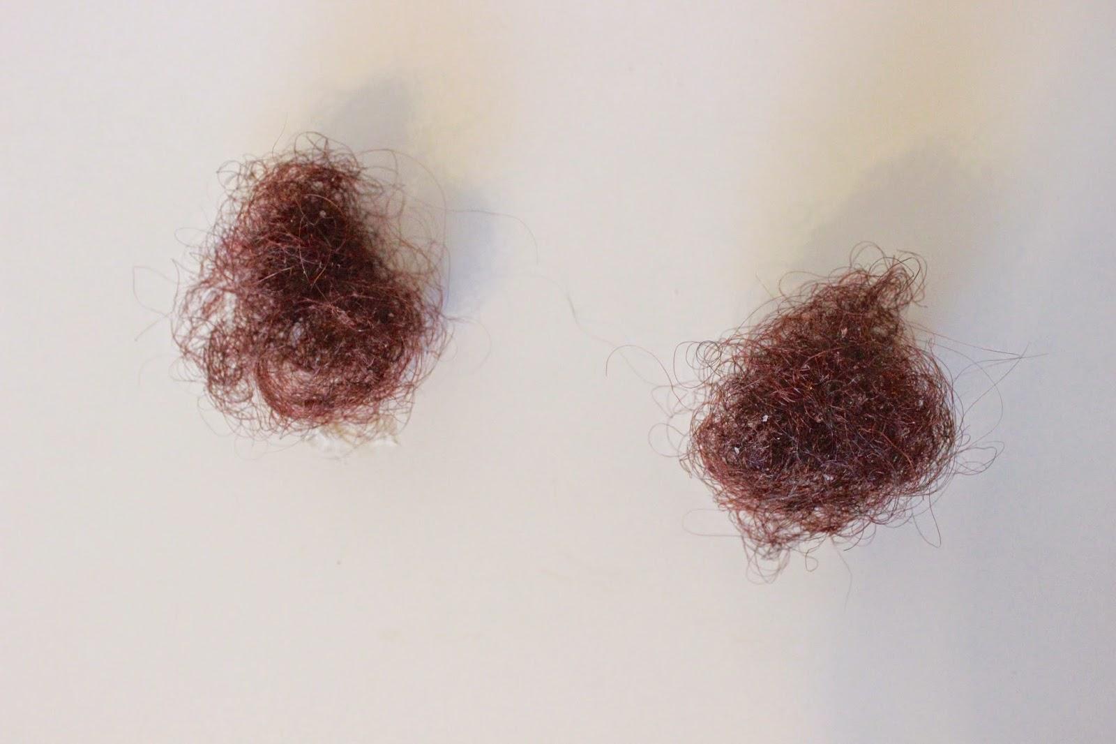 seasonal spring fall shedding natural hair