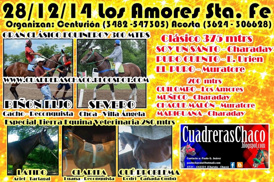 LOS AMORES 14-12