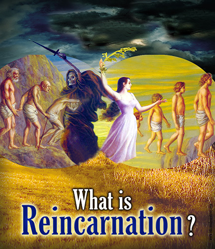 majhienbÜ: Do you believe in reincarnation?