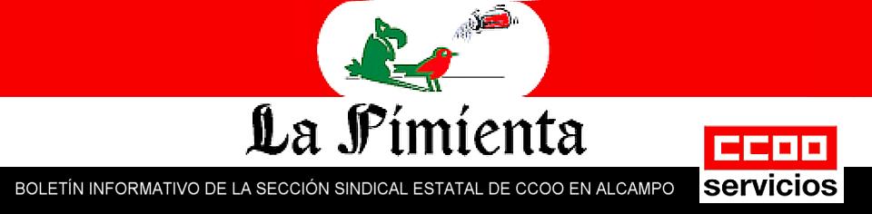 Boletín Informativo de la Sección Sindical de CCOO en Alcampo
