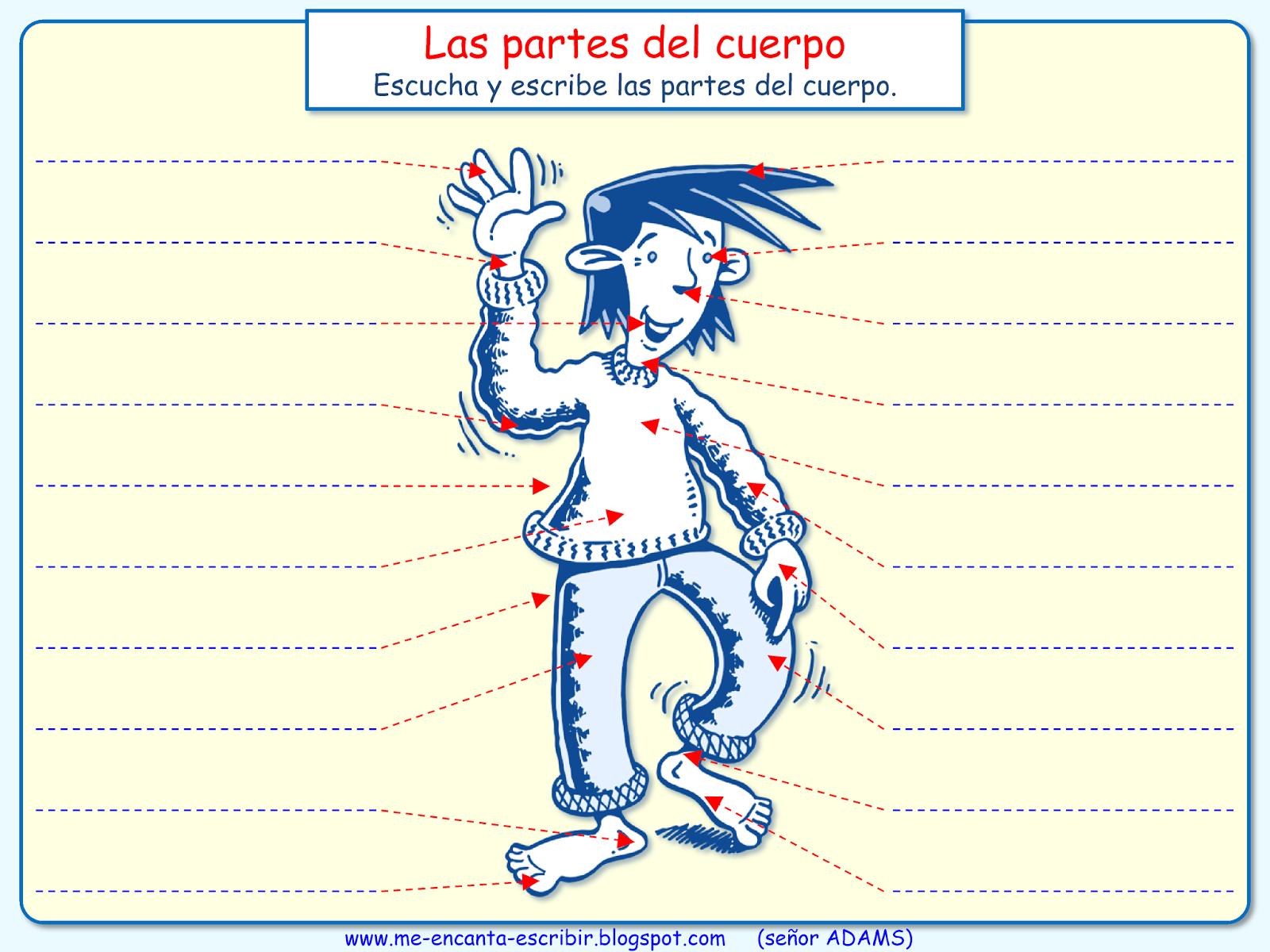 Me encanta escribir en español: Las partes del cuerpo (dictado)