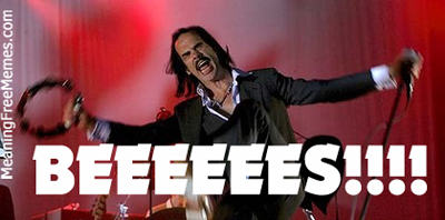 Nick Cave Not Nic Cage BEEEEEES!!!!