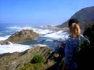 Rocky Indian Ocean