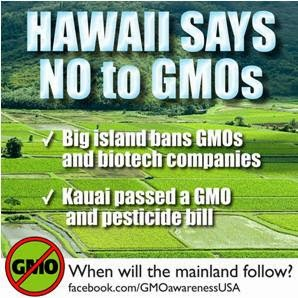Hawaii Bans GMOs