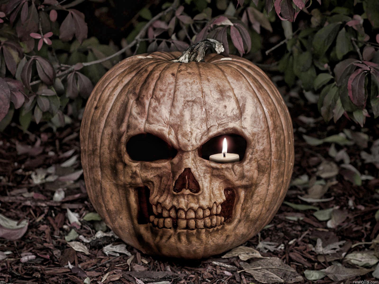 Loading Scary Pumpkin Halloween Wallpaper