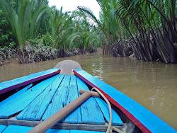 Das Mekong-Delta