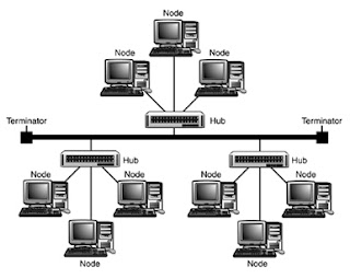Computer Network Topology