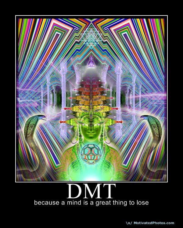 dmt machine