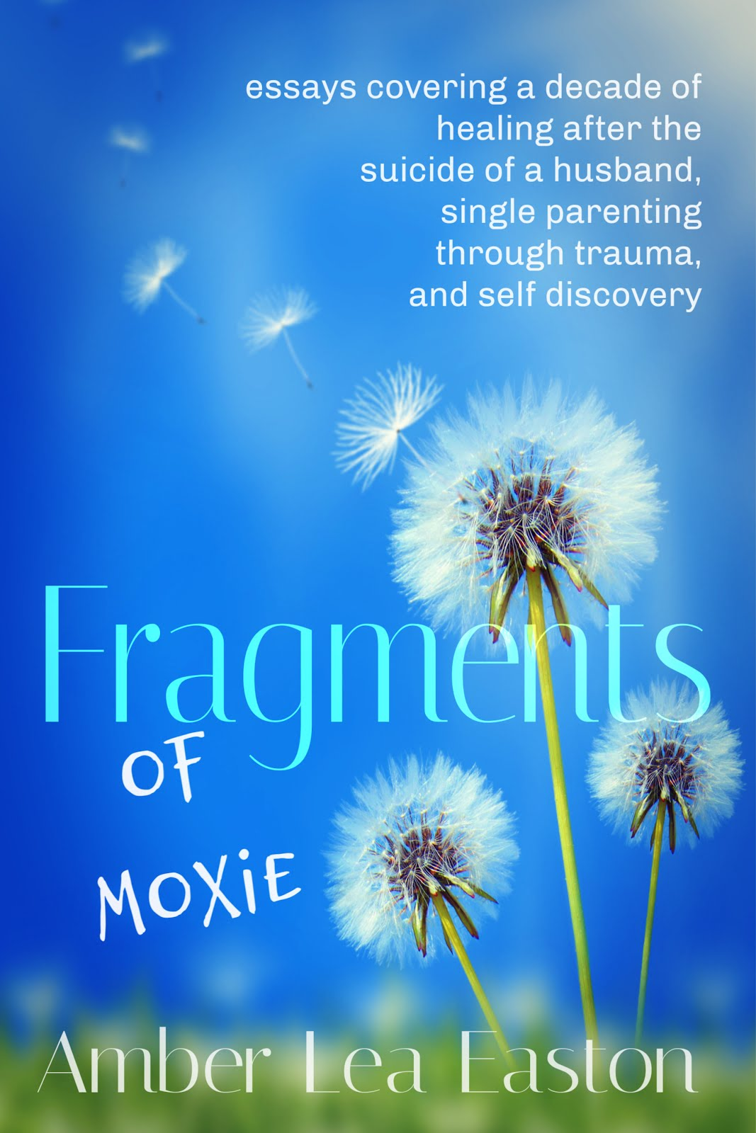Fragments of Moxie- nonfiction new release
