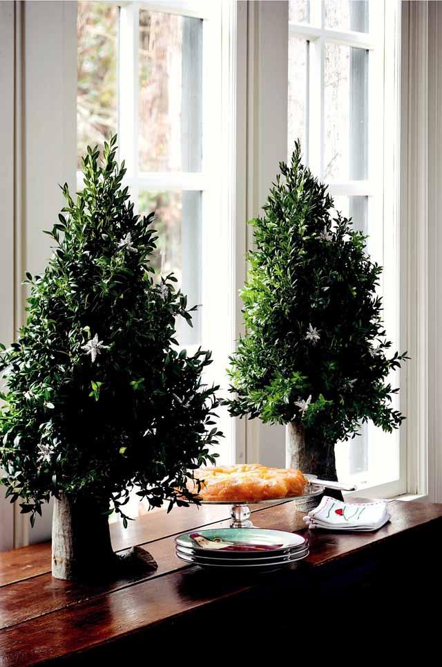 arboles de navidad pequeños y elegantes - junto a la ventana