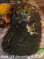 carrefour brasov Graviola sau guanábana - fructul care de vindecă în cazul în care mănânci doar chips-uri care-s cancerigene (vindecă e prea mult spus, ameliorează, previne, ajută la sănătate)