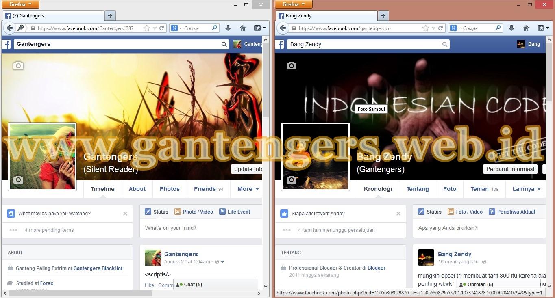 Cara Membuka 2 Akun  Facebook Dalam 1 Browser