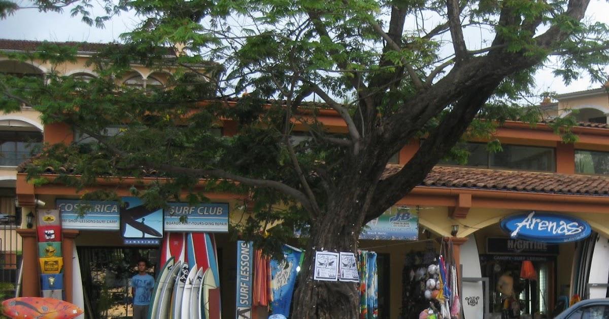 Rica tamarindo costa prostitutes in The Crazy