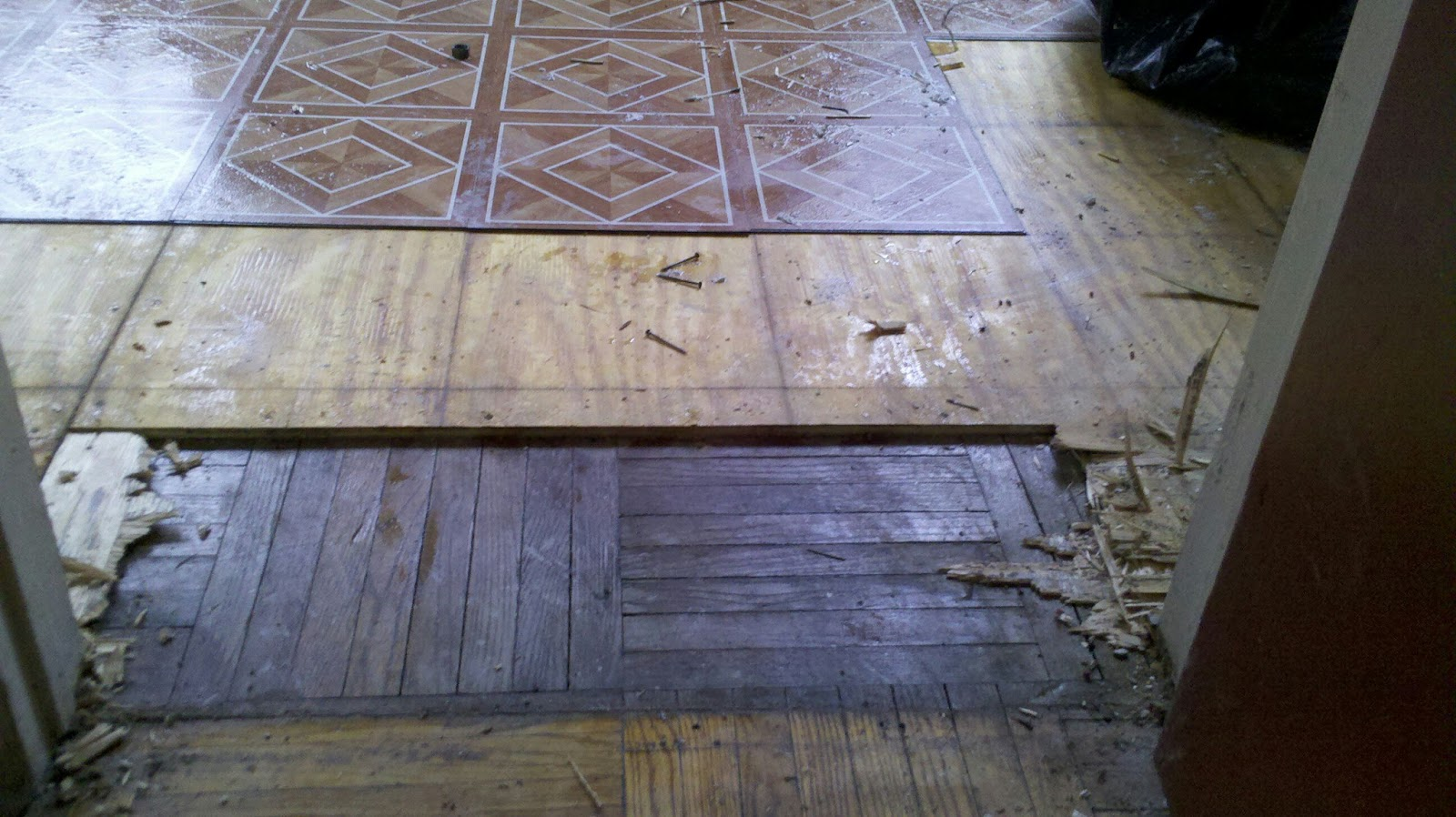 Bk to the fullest projects sterling place renovation for Wood floor under carpet