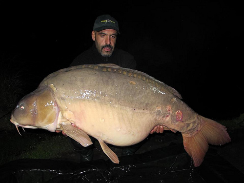 International fishing news spain monster carp caught for Lopez lake fishing report
