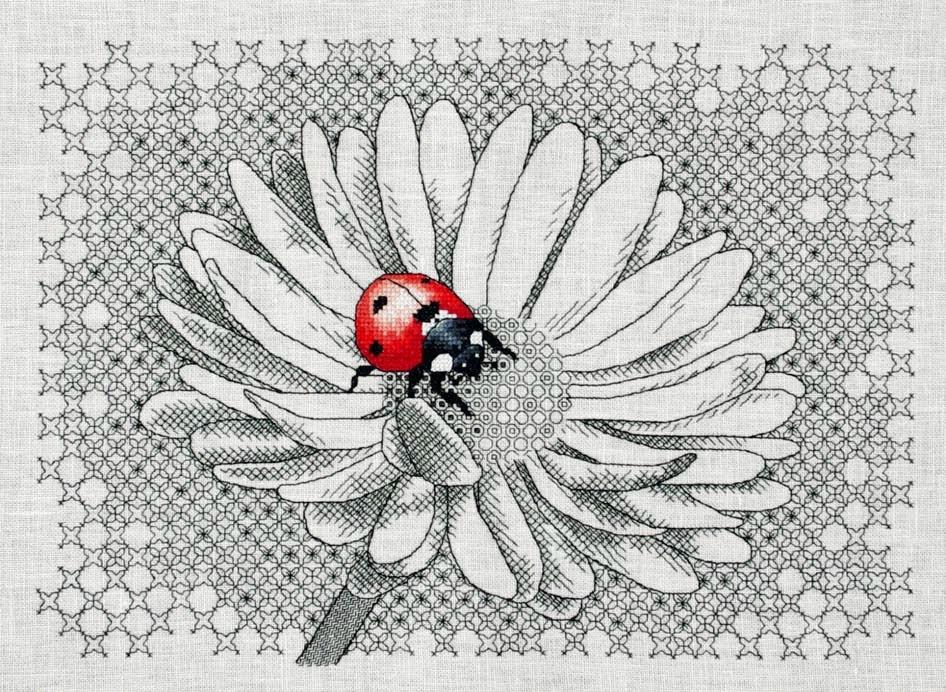 Ladybug & Daisy (Empieza en Junio)