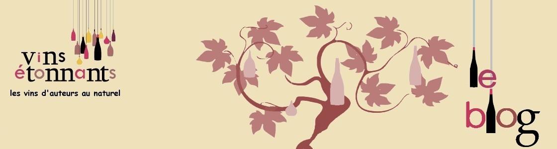 Vins Etonnants