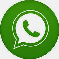 Introduction to WhatsApp Status, message and other features.