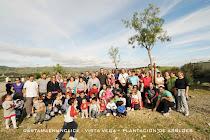 Plantación en Mirador del Valle