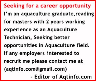 Seeking for a career opportunity