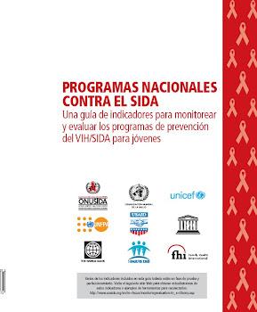 Programas Nacionales contra el Sida , Una guía de indicadores para monitorear
