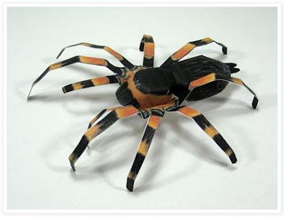template for paper tarantula by Patrick Pasques