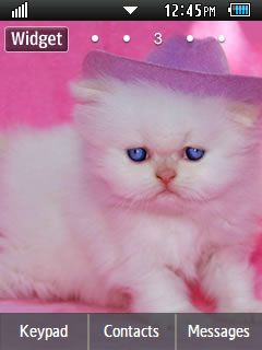 Other Cute Pink Cat Samsung Corby 2 Theme Wallpaper